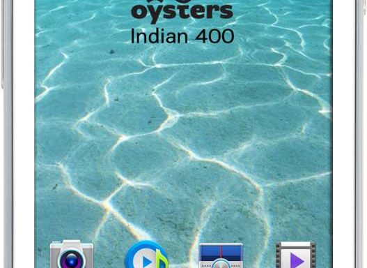 Смартфон Oysters модель Indian 400 White
